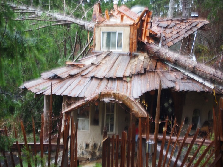 A four-ton tree fell on this Mudgirl-built cob home, stopping at the cob wall