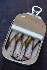 By jules (Flickr: sardines in a can) via Wikimedia Commons