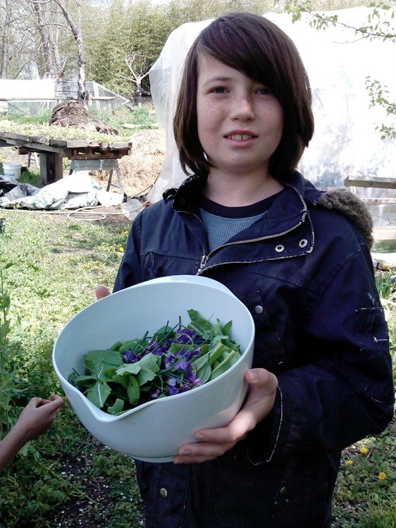 A child from a homeschool cooperative with salad ingredients foraged from the homestead