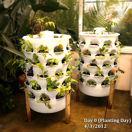 Garden tower project shawndra miller for Vertical garden tower