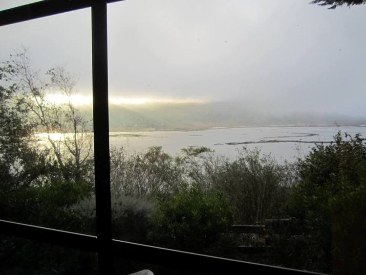 My writing shed  overlooked a Tomales Bay tidal estuary, where San Andreas fault lies.