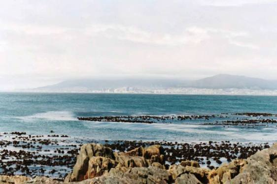 Looking back across the bay toward Cape Town.