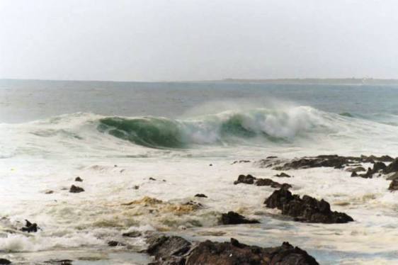 Shore of Robben Island