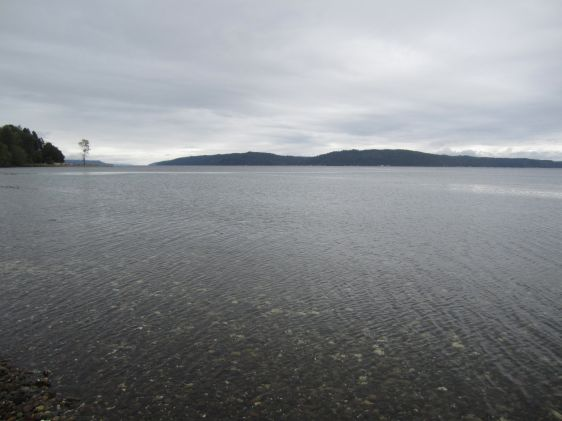 Hood Canal, a basin of Puget Sound, as seen from Potlatch Beach on a moody day.