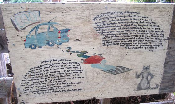 Signage showing the overview of the mycoremediation