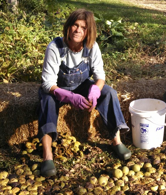 Nancy removing husks from walnuts grown in her food forest.