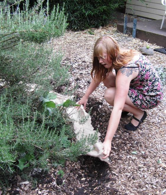 A sister volunteer/learner at an Olympia Mycelial Network project in Washington State